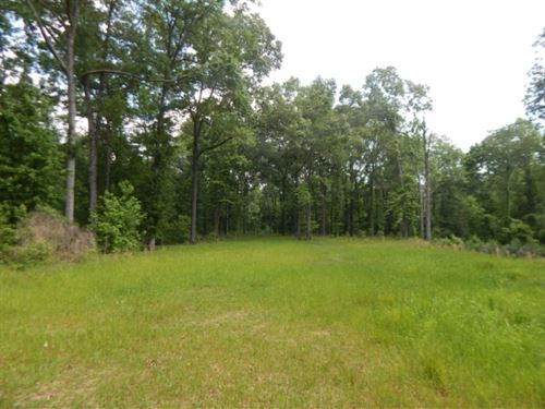 501 Acres In Adams County In Natche : Sibley : Adams County : Mississippi