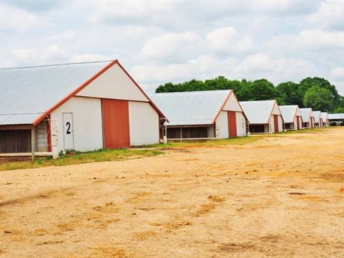 8 House Broiler Farm For Sale Covin : Mount Olive : Covington County : Mississippi