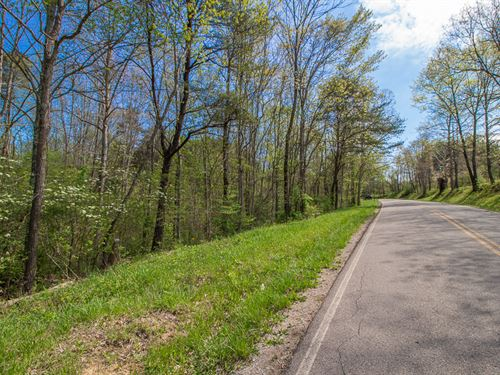 Rauber Rd - 4 Acres : Logan : Hocking County : Ohio