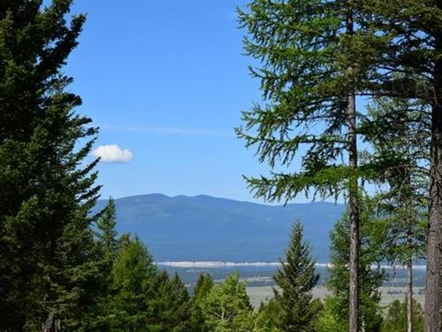 Caribou Grounds : Eureka : Lincoln County : Montana