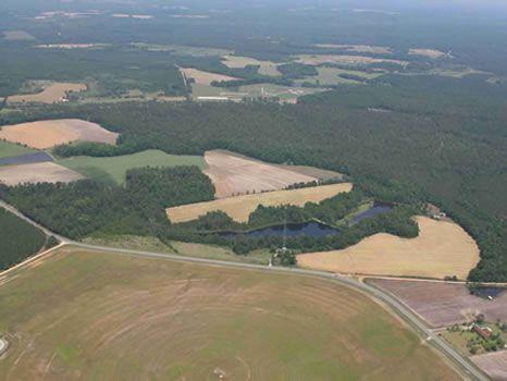 99.346 Acres | Beautiful Farm : Swainsboro : Emanuel County : Georgia