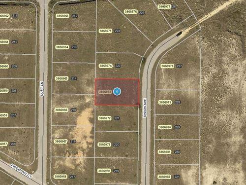 .24 Acres In Mascotte, FL : Mascotte : Lake County : Florida