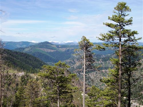 Vision Of Seclusion : Clinton : Granite County : Montana