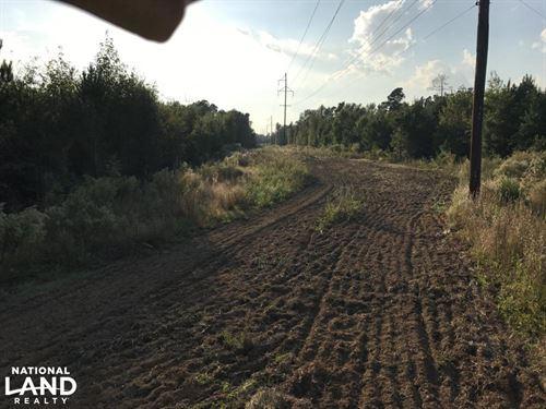 Elko Small Hunting & Recreational : Elko : Barnwell County : South Carolina