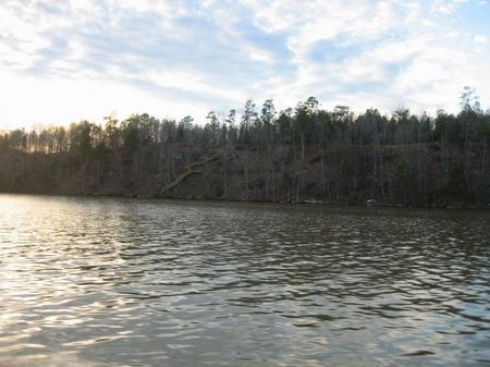 5.23 Acre Water Access Lot : Bankhead Lake : Walker County : Alabama