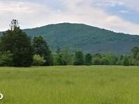 Ouachita Mountains Farm And Hunting : Caddo Gap : Montgomery County : Arkansas