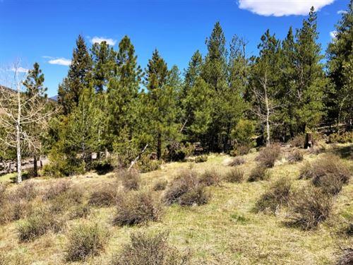 Beaver Mountain Estates, Lot 5 : South Fork : Rio Grande County : Colorado