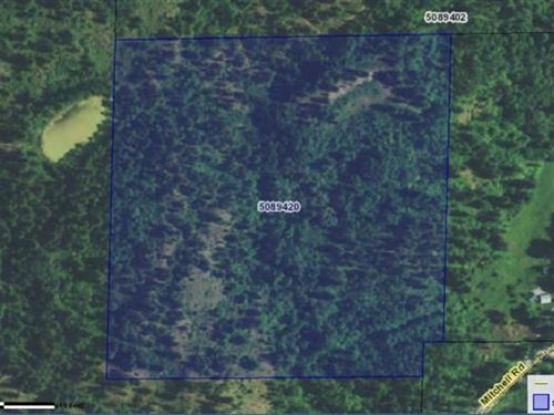 Nearly 40 Ac Near Northport Wa : Northport : Pend Oreille County : Washington