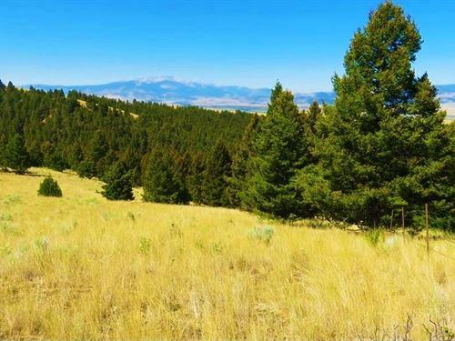 Perkins Gulch Ranch : Anaconda : Deer Lodge County : Montana