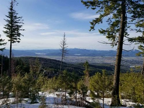 Blossom Mountain Views : Post Falls : Kootenai County : Idaho