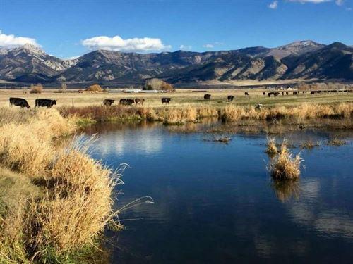 Trout Creek Ranch : Belgrade : Gallatin County : Montana