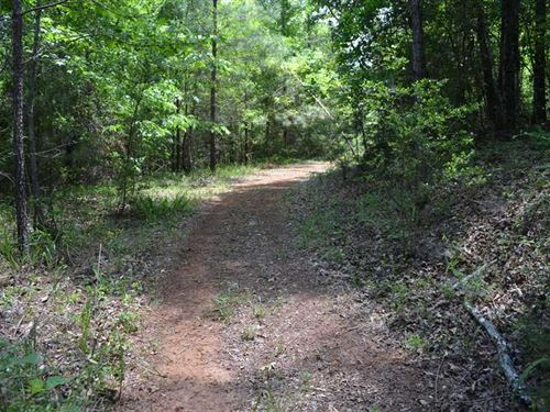 47.5 Acres Inside Prattville City : Prattville : Autauga County : Alabama