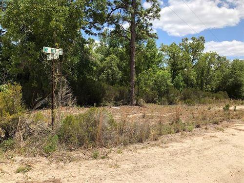 1.25 Acres 775735 : Archer : Levy County : Florida