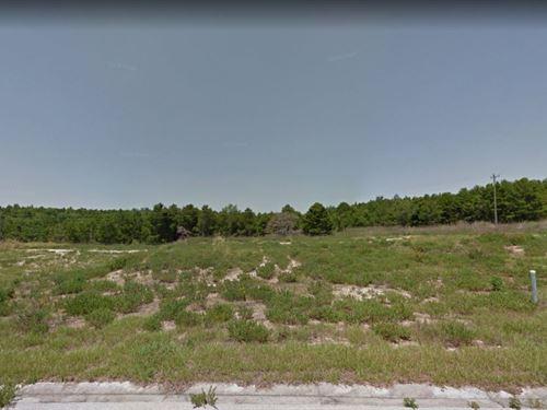 .3 Acres In Mascotte, FL : Mascotte : Lake County : Florida