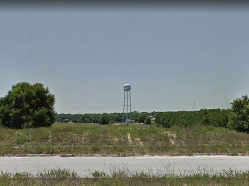 .53 Acres In Mascotte, FL : Mascotte : Lake County : Florida