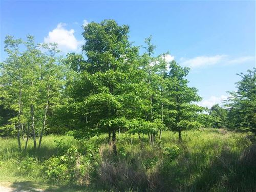 The Horizon Subdivision - Lot 18 : Kirbyville : Taney County : Missouri