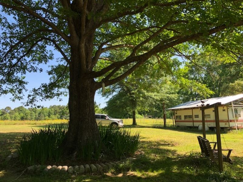 2.3 Acres In Amite County With All : Smithdale : Amite County : Mississippi