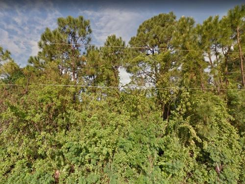 .27 Acres In Palm Bay, FL : Palm Bay : Brevard County : Florida