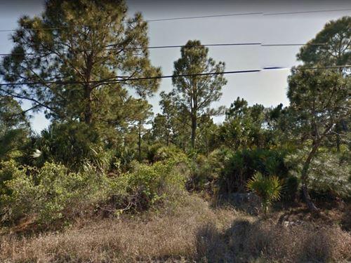 .24 Acres In Palm Bay, FL : Palm Bay : Brevard County : Florida