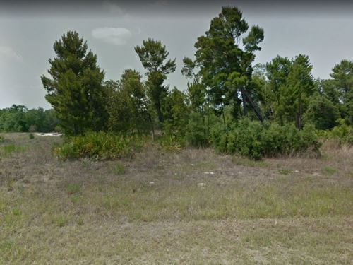 .34 Acres In Poinciana, FL : Poinciana : Polk County : Florida