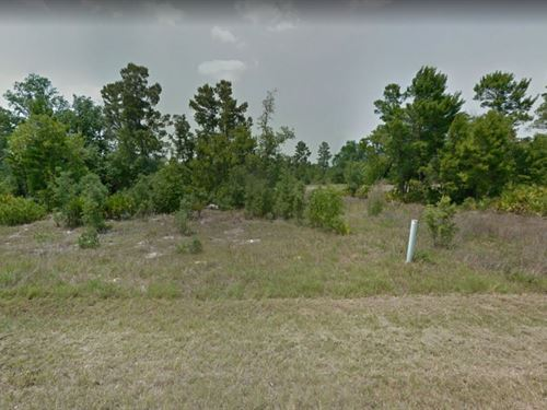 .3 Acres In Poinciana, FL : Poinciana : Polk County : Florida
