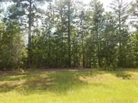 Great Country Home Site : Eatonton : Putnam County : Georgia