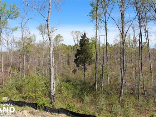 Belmeade Drive : Charlotte : Mecklenburg County : North Carolina