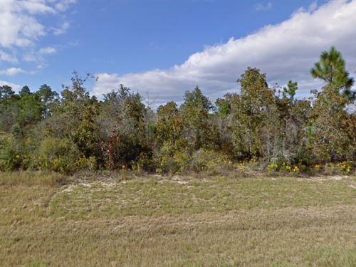 Washington County, Fl $33,000 Neg : Sunny Hills : Washington County : Florida