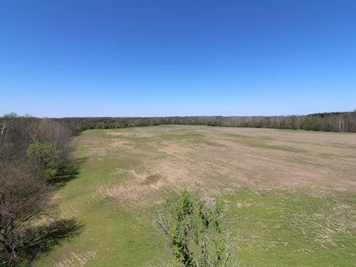 Shaw Rd - 88 Acres : Spencer : Medina County : Ohio