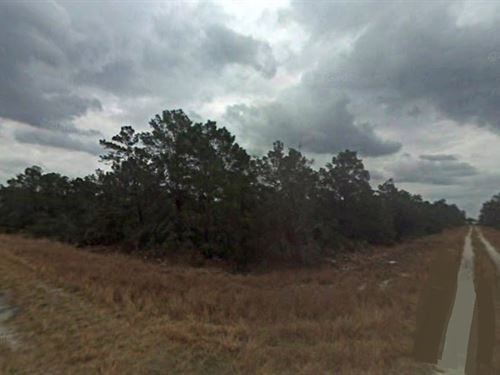 Highlands County, Fl $31,000 Neg : Sebring : Highlands County : Florida