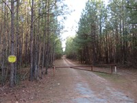 Fish Road Tract : Emporia : Greensville County : Virginia