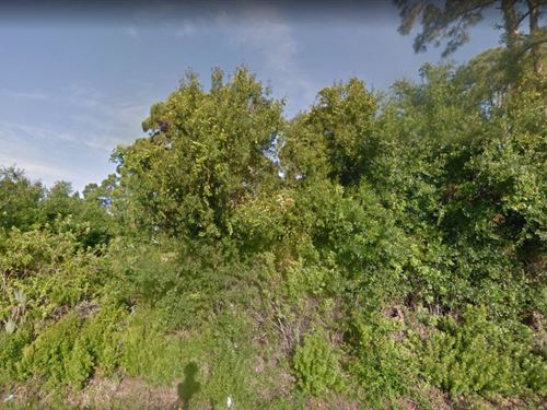 .18 Acres In Punta Gorda, FL : Punta Gorda : Charlotte County : Florida