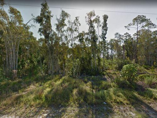 .16 Acres In Punta Gorda, FL : Punta Gorda : Charlotte County : Florida