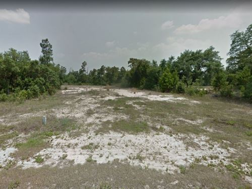 .16 Acres In Poinciana, FL : Poinciana : Polk County : Florida