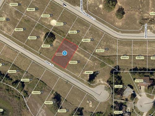 .23 Acres In Mascotte, FL : Mascotte : Lake County : Florida
