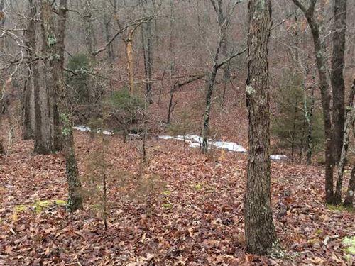 210 Acre Hunting Get Away : Waynesville : Pulaski County : Missouri