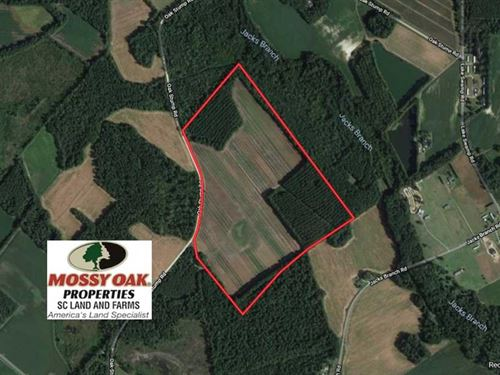 72.36 Acres of Farm And Timber Lan : Timmonsville : Darlington County : South Carolina
