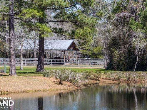 Charleston Equestrian Estate : Huger : Berkeley County : South Carolina
