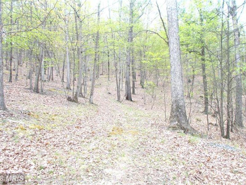 Nice Building Site : Burlington : Mineral County : West Virginia
