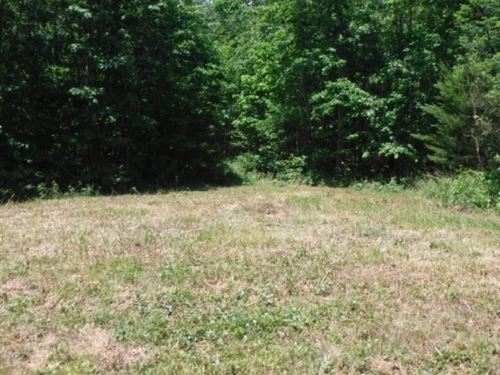 7.53 Ac Totally Wooded, Level : Wilder : Fentress County : Tennessee