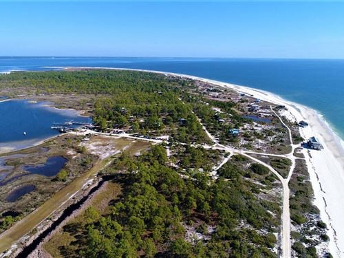 Dog Island Acreage In Carrabelle : Carabbelle : Franklin County : Florida