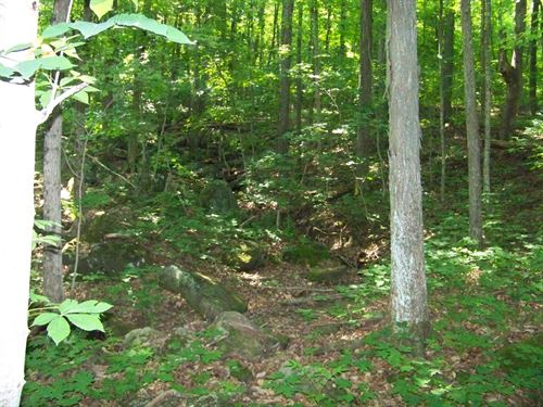 8 Ac Totally Wooded, Easy Access : Sparta : White County : Tennessee