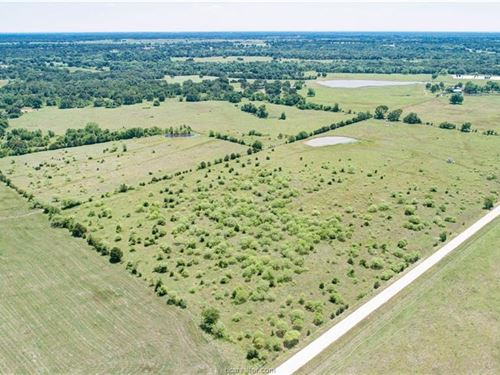 99+ Acres North Brazos County : Hearne : Brazos County : Texas