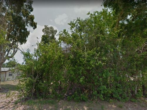 .24 Acres In Sebastian, FL : Sebastian : Indian River County : Florida
