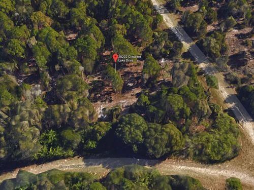 .22 Acres In Punta Gorda, FL : Punta Gorda : Charlotte County : Florida