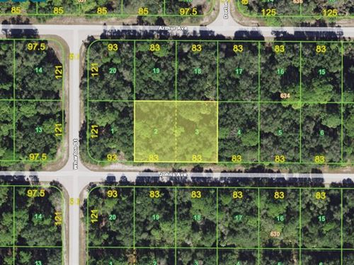.46 Acres In Port Charlotte, FL : Port Charlotte : Charlotte County : Florida