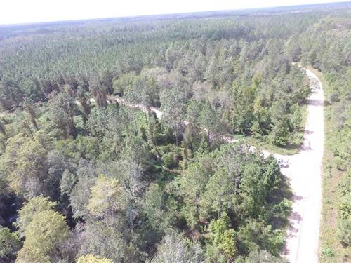 Cretan Farms Llc Aucilla Fire To : Greenville : Madison County : Florida