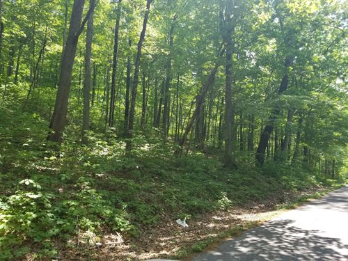 8.00+/-Acres Unrestricted Wooded : Beersheba Springs : Grundy County : Tennessee