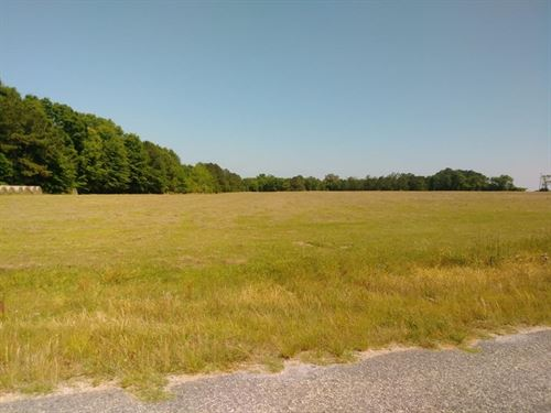 Beautiful Farm Land : Midland City : Dale County : Alabama