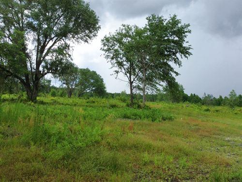 Land Close To I-10 Interchange : Lake City : Columbia County : Florida